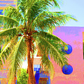 Palm Of Miami by Jost Houk