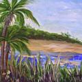 Palm Trees In Florida Cove by Barbara Harper