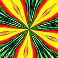 Papaya by Maxwell Kerr