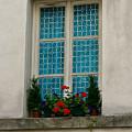 Paris - Window by Jennifer McDuffie
