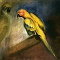 Parrots by Mushtaq Bhat