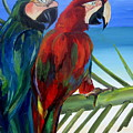 Parrots On The Beach by Patti Schermerhorn