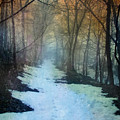 Path Through The Woods In Winter At Sunset by Jill Battaglia