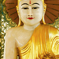 Peaceful Buddha by Michele Burgess