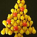 Pear Tomatoe Tree by Jeanette Oberholtzer