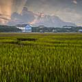 Pelican Inn Sunrise by Ginny Horton