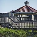 Pelican Weathervane Ocean Isle Norht Carolina by Teresa Mucha