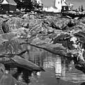 Pemaquid Point Lighthouse Maine Black And White by Glenn Gordon