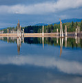 Pend Oreille River Pilings by Idaho Scenic Images Linda Lantzy
