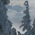 Pend Oreille Thru Fog by Robert Bissett