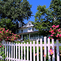 Peonies And Picket Fences by Betsy Foster Breen