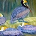 Peruvian Pelicans Two Pastel by Antonia Citrino