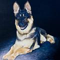Pet Commission-shaka by Pauline Sharp