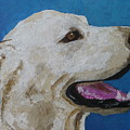 Pet Portrait Of Smiley Riley by Laura Dinoia