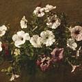 Petunias by Ignace Henri Jean Fantin-Latour