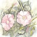 Petunias by Jackie Mueller-Jones