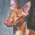 Pharaoh Hound by Lee Ann Shepard