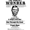 Phineas Gage World's Wonder by Lisa Redfern