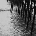 Pier Legs by Melody  Glennon