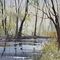 Pine River Reflections by Ryan Radke