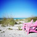 Pink Paradise Vanilla Pop by Chris Andruskiewicz