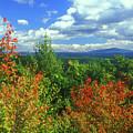 Pisgah State Park Foliage by John Burk