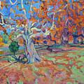 Platan Tree In Sunny Autumn by Vitali Komarov