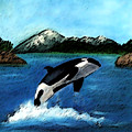 Playful Orca by Mary Gaines