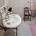 Plumber - The Bathroom  by Mike Savad