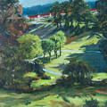 Polin Springs by Rick Nederlof