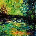 Pond 560120 by Pol Ledent