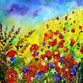 Poppies And Blue Bells by Pol Ledent