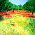 Poppies In The Almond Grove by Lizzy Forrester