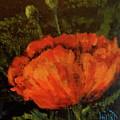 Poppy IIi by Lana Hart