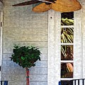 Porch Fan by Donna Bentley