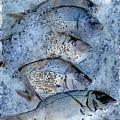 Porgies On Ice by Dee Flouton