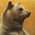 Portrait Of A Bear by James W Johnson