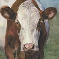 Portrait Of A Cow Iv by Terri  Meyer