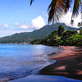 Portsmouth Shore On Dominica Filtered by Duane McCullough