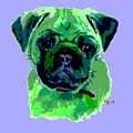 Posterized Pug by Jimmie Trotter