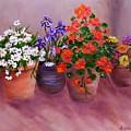 Pots Of Flowers by Jamie Frier