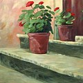Potted Geraniums by Linda Eades Blackburn