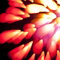 Powerful Explosion K874 by Yoshiki Nakamura