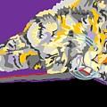 Pretty Kitty by Su Humphrey