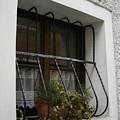 Pretty Window by Mary Rogers