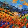 Provence 459020 by Pol Ledent
