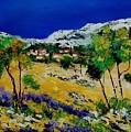 Provence 569060 by Pol Ledent