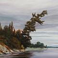 Ptarmigan Bay by Ruth Kamenev