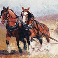Pulling Contest Clydesdales Draft Horse Paintings by Kim Corpany