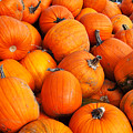 Pumpkins by Louise Heusinkveld